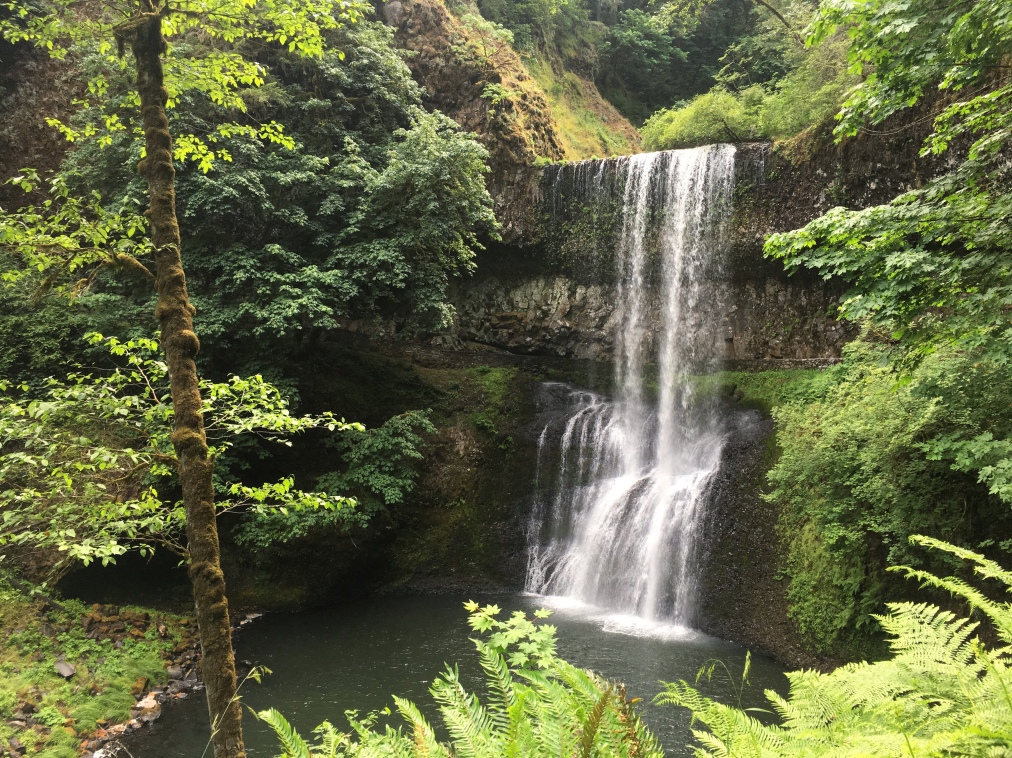 Where to Find Some of the Best Waterfalls in Oregon